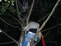 image of Sázava fest 2007 se blíží