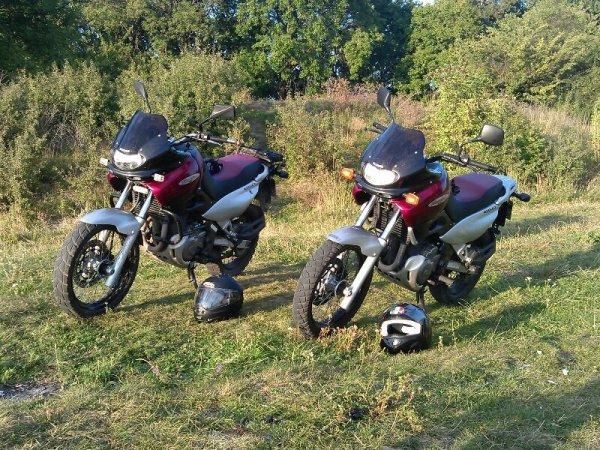 image of Koupil jsem si motorku